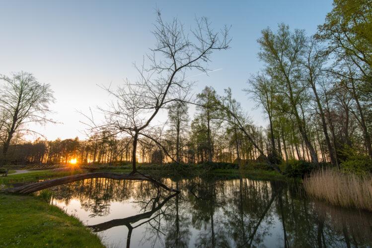 Hollanda_0043