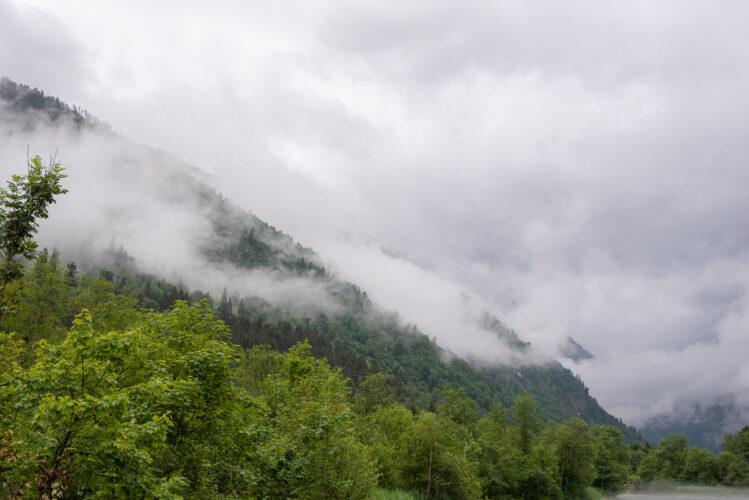 Avusturya_0066